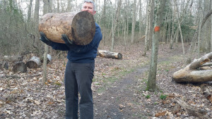 Log Walks For Real Deal Fitness